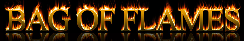 Bag Of Flames - Logo